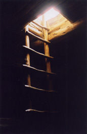 Balcony House kiva ladder