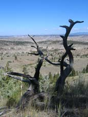 Missouri Breaks Backcountry Scenic Byway2