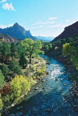 Virgin River Zion National Park2