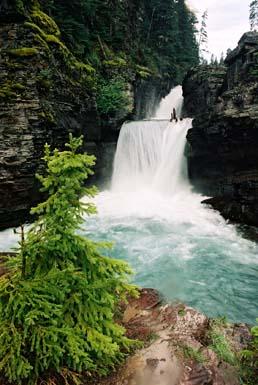 Virginia Creek falls