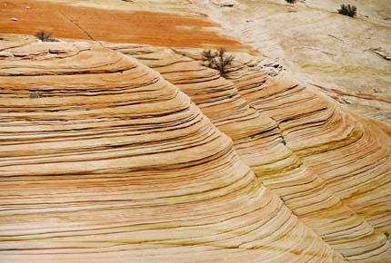 Zion National Park sandstone